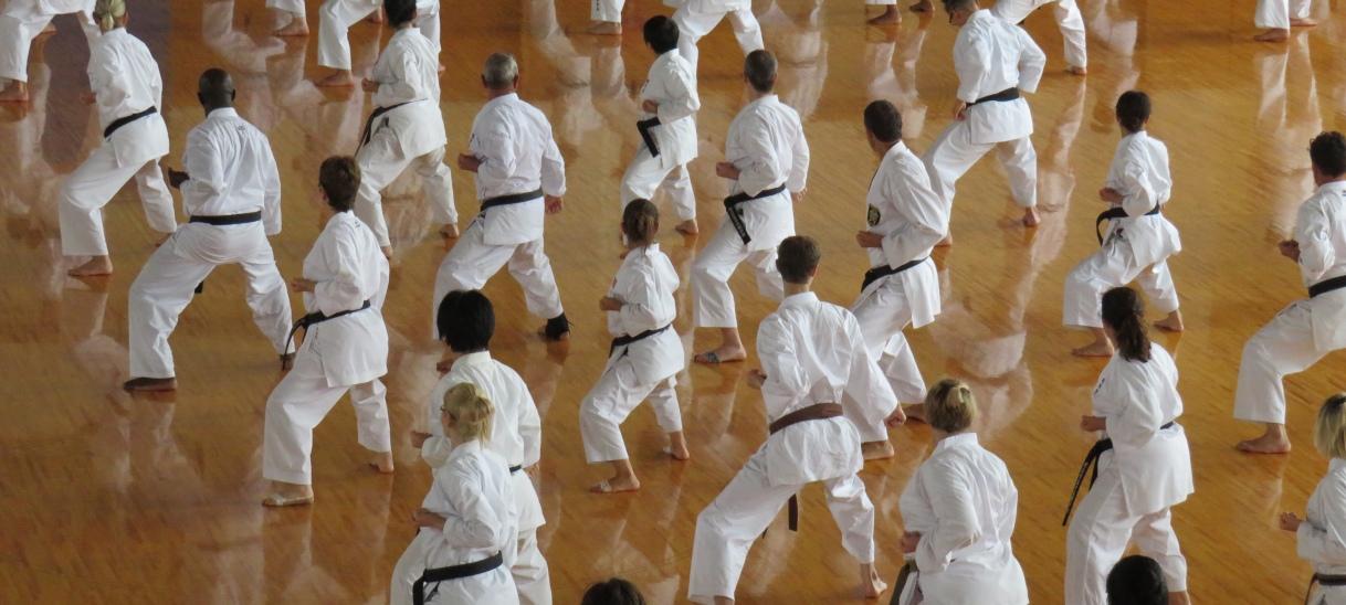 Seiwa Kai Seminar, Japan2019