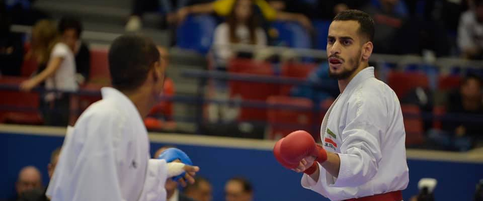 Sensei Hamoon is Going to the Olympics